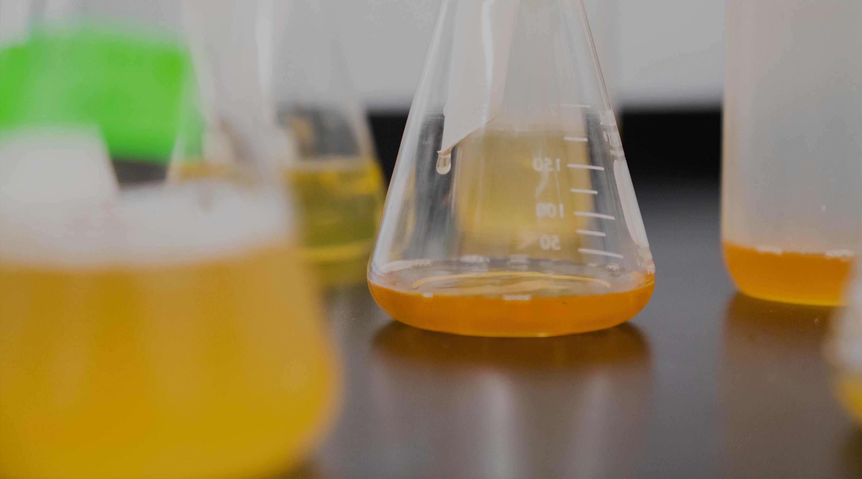 The Start-Up Drinks Lab - Recipe Development